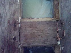 Venus Door 4
