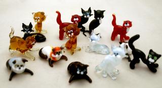 Wgk cats