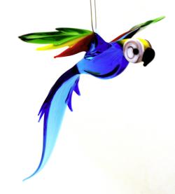 Wgk parrot